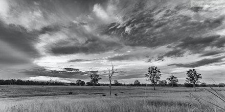 Farmland, Upper Caboolture, QLD