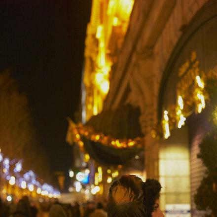 Champs Elysées at New Year - Paris, New Year's Day, champs elysées