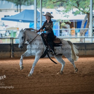 PCRS Saturday 2016 - Only 1-2 images per horse have been uploaded due to the number of horses competing on these days.  If you are interested in viewing...