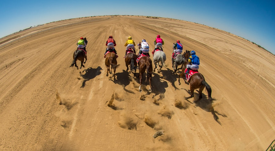 Birdsville, Race 2, Starting Gate_02-09-17, Sharon Lee Chapman_0273