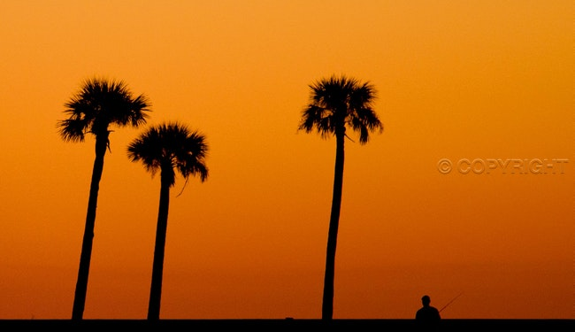 Sunset at Broadwater - A fisherman tries his luck as the sun goes down at the Broadwater Marina in Biloxi. MS.