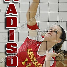 Andrean Volleyball Samples - 8/19/14 - View six Andrean banner samples.
