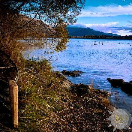 jmg_20100427_NZ_Landscape_8