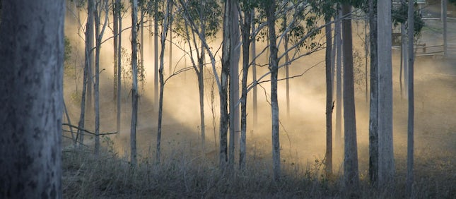 Spirits of Coffee Creek - Toowoomba, Australia.