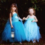 Fairies In The Rainforest