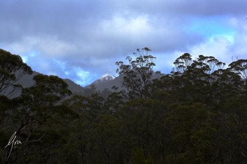 Table Mountain Tasmania