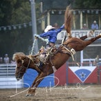 Myrtleford APRA Rodeo 2017 - Grand Entry & Evening Performance