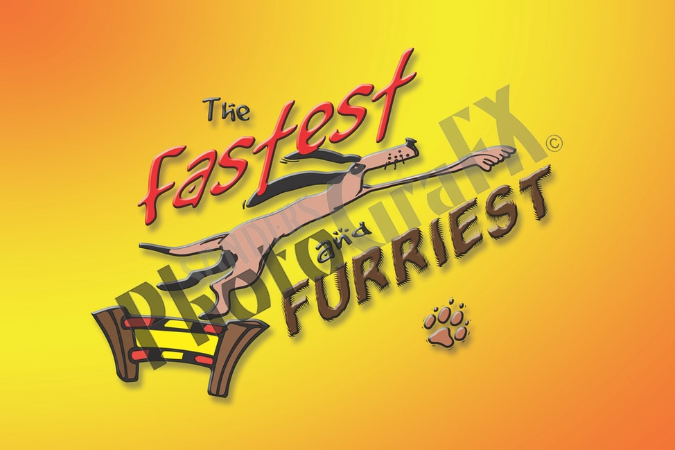 The Fastest and Furriest Canine Final