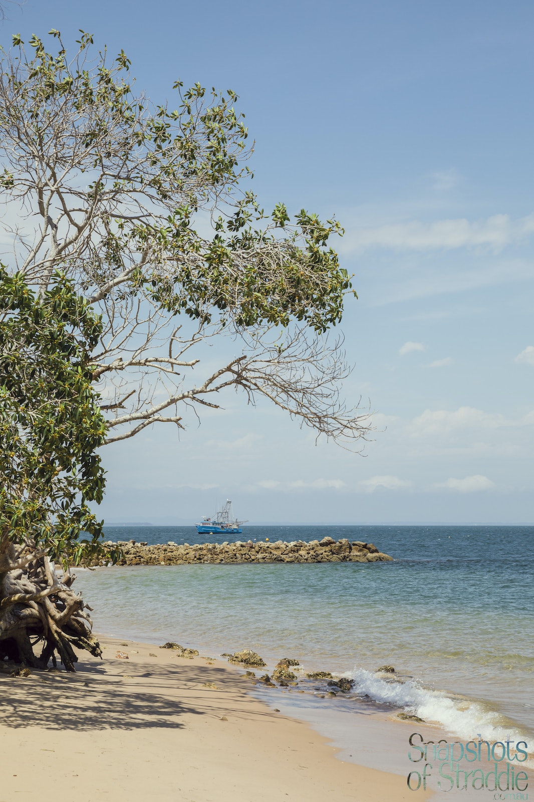 Tree trawler groin - Snapshots of Straddie. Wall Art Landscape and Seascape Photography by Julie Sisco. Photos from North Stradbroke Island, Queensland,...
