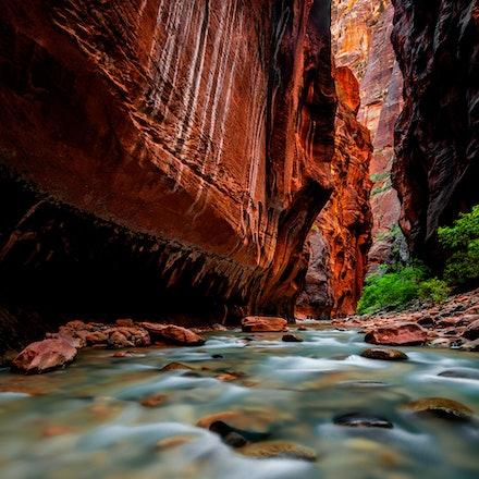 Upstream - Zion National Park, Utah. 2013.