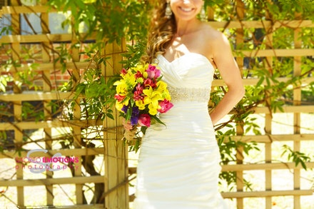 Williamson Bridal