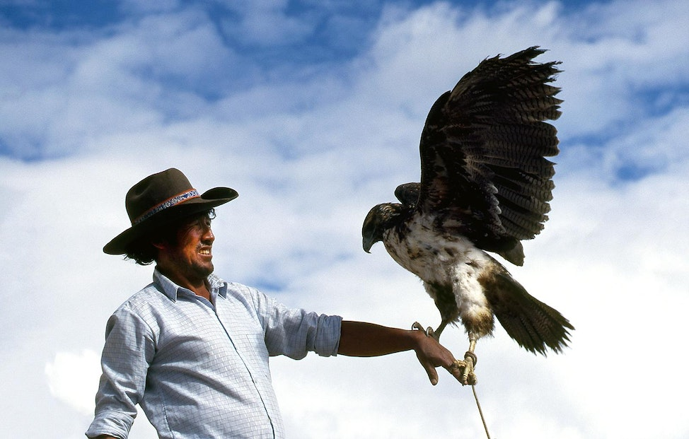 Eagle Man, Maca, Peru