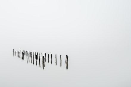 Forgotten in the fog - Oyster scaffolds on Tuross Lake under heavy fog