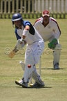 Cricket - A Grade (16-1-2010)