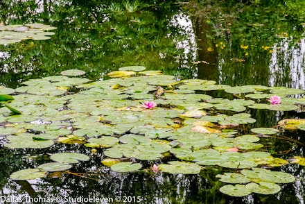 France 2013 Giverny 035