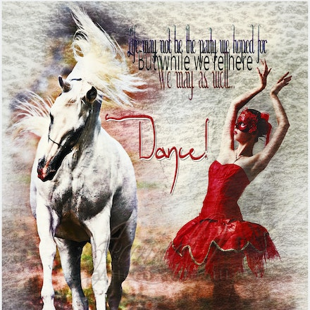 Dance - Life may not be the party we hoped for but while we are here we may as well dance.White stallion image was taken by Sharon Meyers of Sharon Meyers...