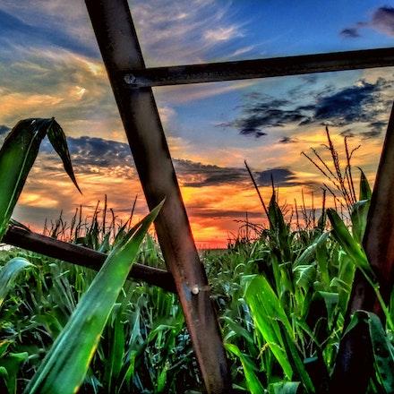 Bolts & Angle Iron  8.14.2014.1 - Bolts and Angle Iron. A close up look at an irrigation pivot resting in a Cortland, Nebraska cornfield. #nebraska #farm...